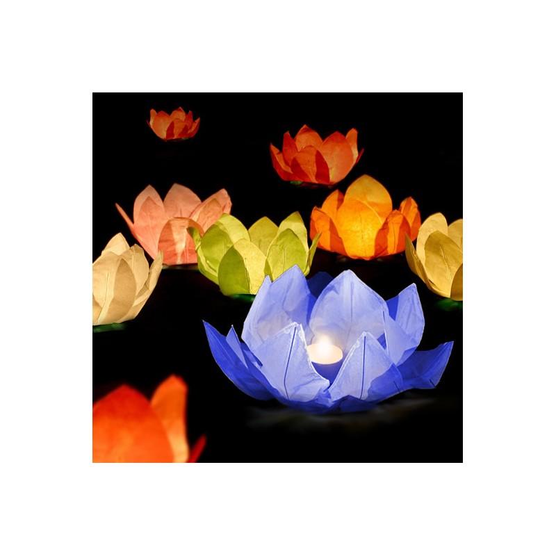 Vodní lampion - lotos