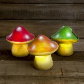 Solární houbička
