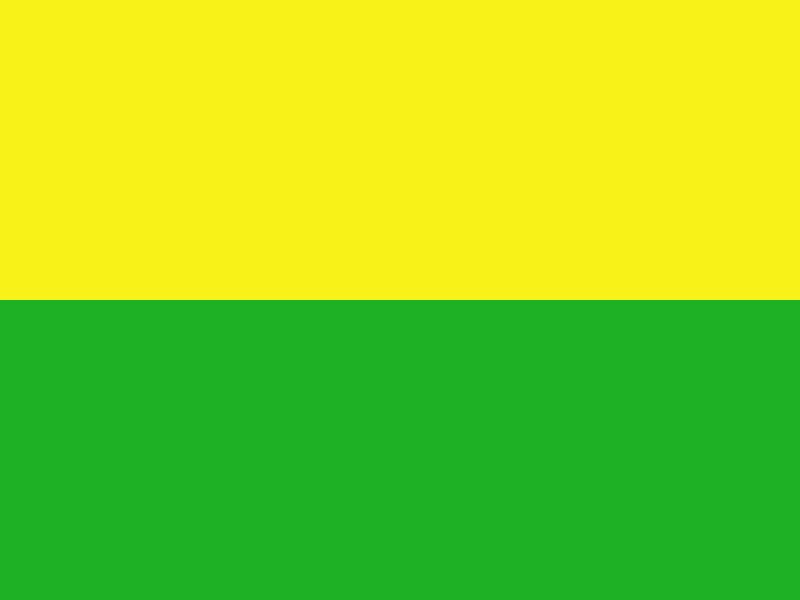 žlutá+zelená